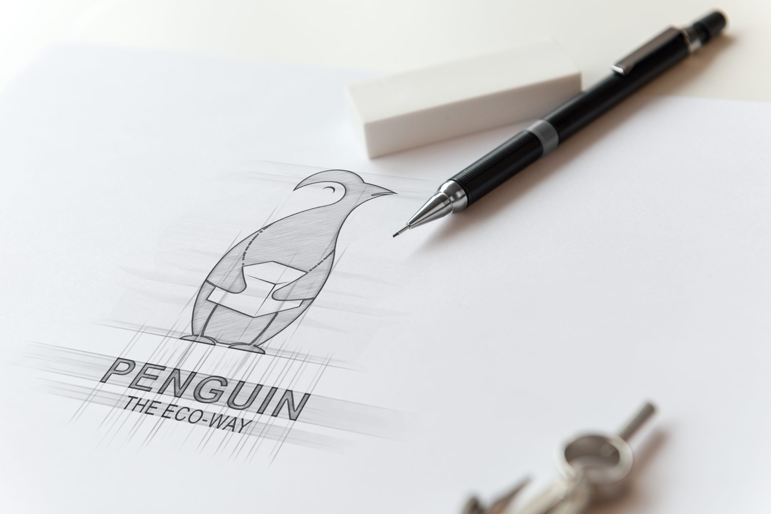 Logo Design for ECO Company