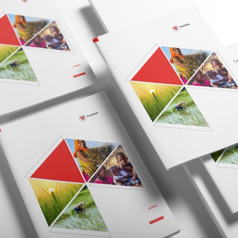 Multinational Corporation Brochure Design